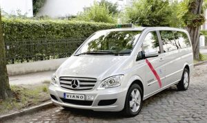 transporte despedida soltero soltera Pamplona taxis minibuses